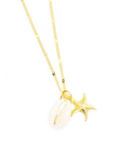 collier étoile de mer et coquillage